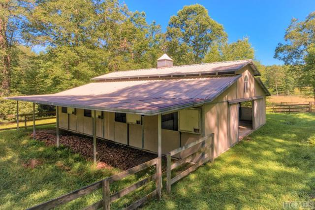 3022 Trays Island Road, Sapphire, NC 28774 (MLS #89153) :: Lake Toxaway Realty Co