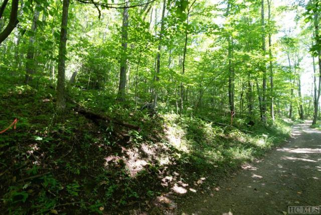 Lot 3G Buckhead Drive, Cullowhee, NC 28723 (MLS #89285) :: Lake Toxaway Realty Co