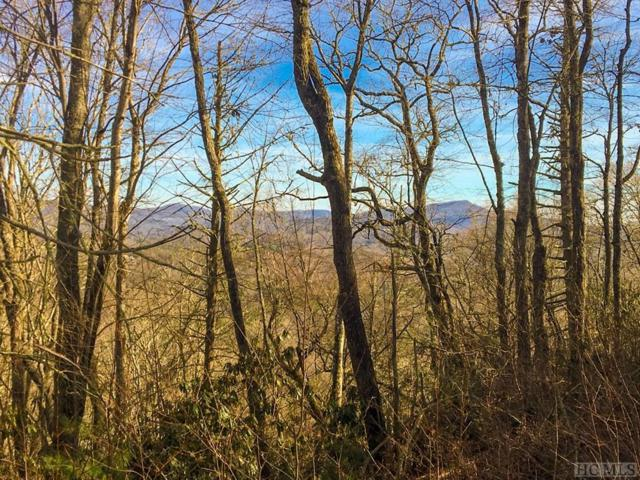 Lot 18 Piney Knob Trail, Cashiers, NC 28717 (MLS #89979) :: Pat Allen Realty Group