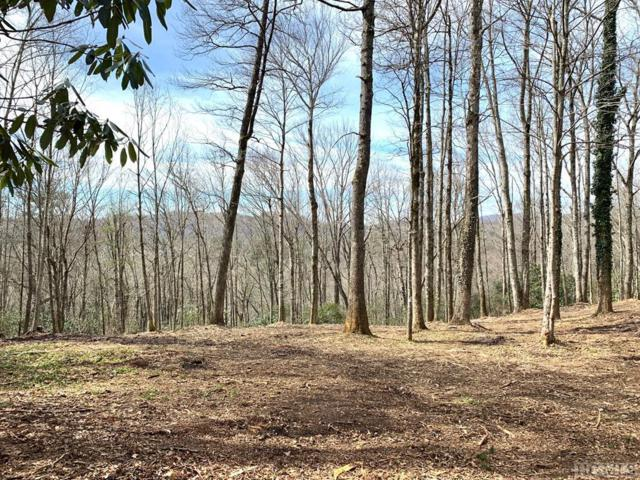 00 South Drive, Highlands, NC 28741 (MLS #90343) :: Pat Allen Realty Group