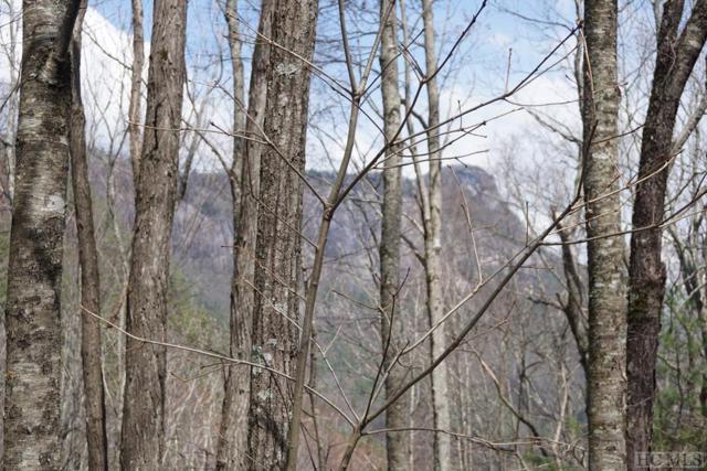 TBD Falcon Ridge, Highlands, NC 28741 (MLS #90648) :: Landmark Realty Group