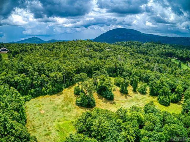 Lot 37 Mountain Meadow Lane, Cashiers, NC 28717 (MLS #91575) :: Pat Allen Realty Group