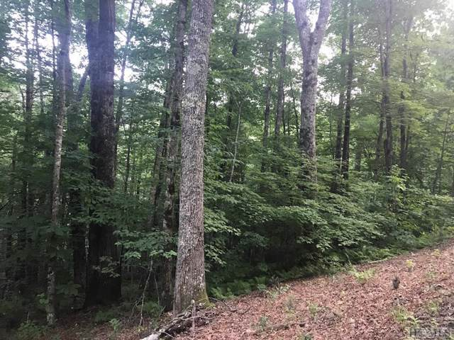 TBD Fenley Forest Trail, Cashiers, NC 28717 (MLS #91585) :: Berkshire Hathaway HomeServices Meadows Mountain Realty