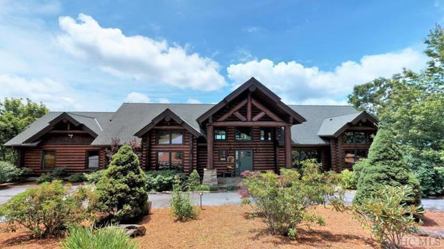 2974 Tower Road, Sapphire, NC 28774 (MLS #91588) :: Pat Allen Realty Group