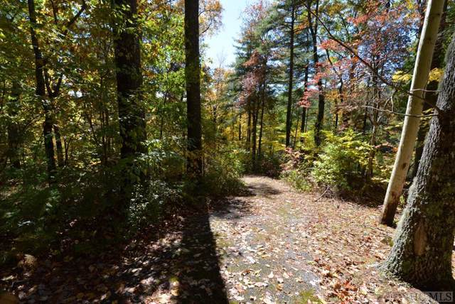 On Chowan, Highlands, NC 28741 (MLS #92313) :: Berkshire Hathaway HomeServices Meadows Mountain Realty