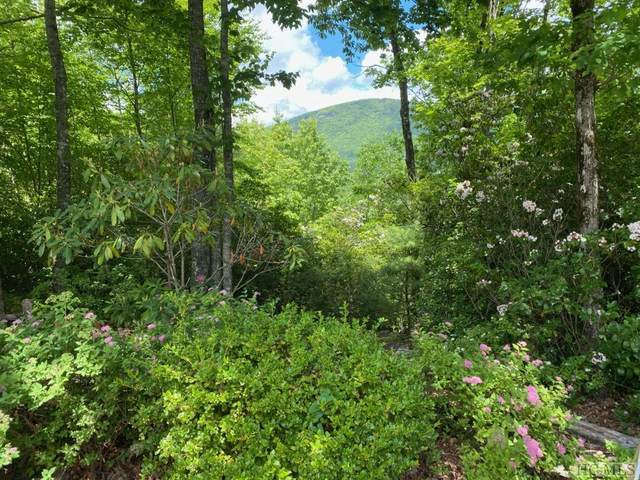 Lot 16 Trillium Court, Sapphire, NC 28774 (MLS #93300) :: Berkshire Hathaway HomeServices Meadows Mountain Realty