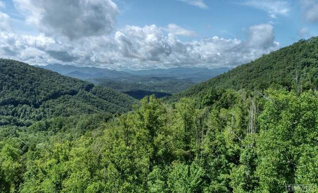 Off Coon Creek Road, Franklin, NC 28734 (MLS #94410) :: Pat Allen Realty Group