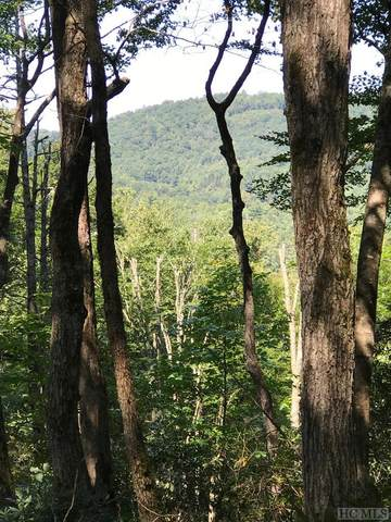TBD Sherwood Forest, Highlands, NC 28741 (MLS #94703) :: Berkshire Hathaway HomeServices Meadows Mountain Realty