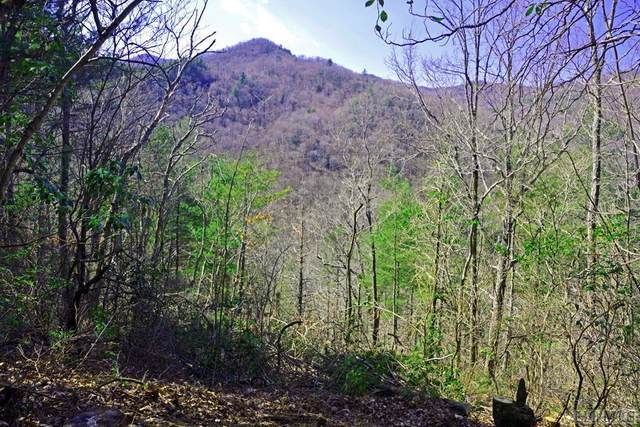 Lot 9 Gorge View, Highlands, NC 28741 (MLS #94768) :: Berkshire Hathaway HomeServices Meadows Mountain Realty