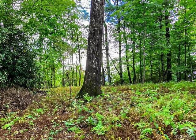 Lot 5 Old Wagon Road, Highlands, NC 28741 (MLS #94822) :: Pat Allen Realty Group