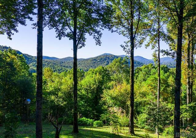 539/535 Bob Long Mountain Road, Scaly Mountain, NC 28775 (MLS #94929) :: Pat Allen Realty Group
