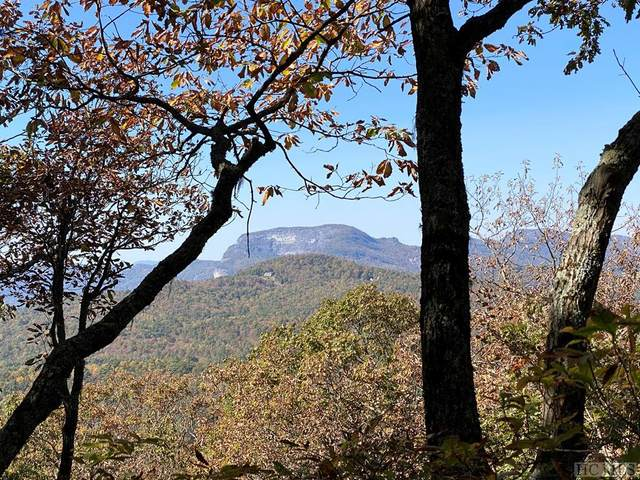 ME-10 Old Chimney, Cashiers, NC 28717 (MLS #95008) :: Berkshire Hathaway HomeServices Meadows Mountain Realty