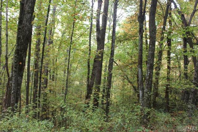 0 Pipetrack Gap Road, Scaly Mountain, NC 28775 (MLS #95133) :: Pat Allen Realty Group