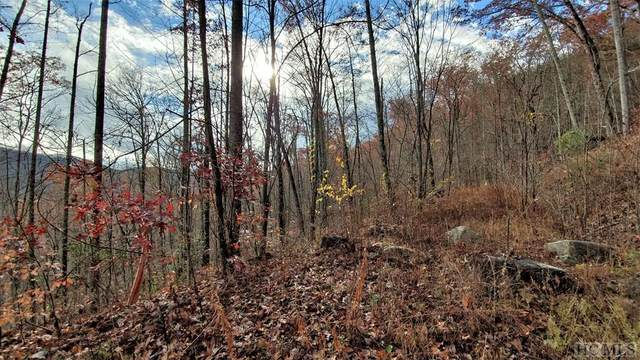 Lot 193 Elk Hair Drive, Cullowhee, NC 28723 (MLS #95258) :: Pat Allen Realty Group