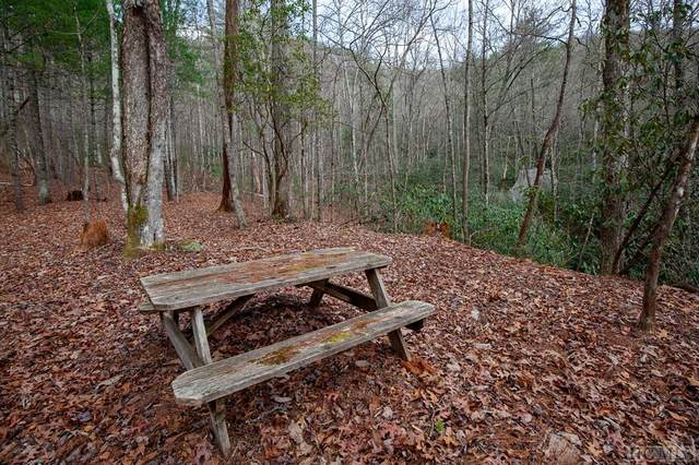 Lot 11 East Valley Drive, Sapphire, NC 28774 (MLS #95371) :: Berkshire Hathaway HomeServices Meadows Mountain Realty