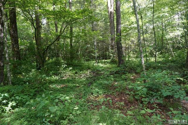 TBD Foreman Road, Highlands, NC 28741 (MLS #95386) :: Pat Allen Realty Group