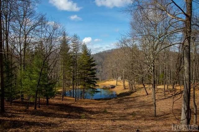 Lt 59 Beechfern Drive, Glenville, NC 28736 (MLS #95734) :: Berkshire Hathaway HomeServices Meadows Mountain Realty