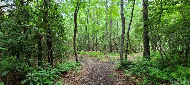 Lot 14 Streamside Drive, Cashiers, NC 28717 (MLS #95954) :: Berkshire Hathaway HomeServices Meadows Mountain Realty