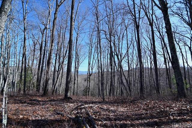 109 Crippled Oak Trail, Cashiers, NC 28717 (MLS #96043) :: Berkshire Hathaway HomeServices Meadows Mountain Realty
