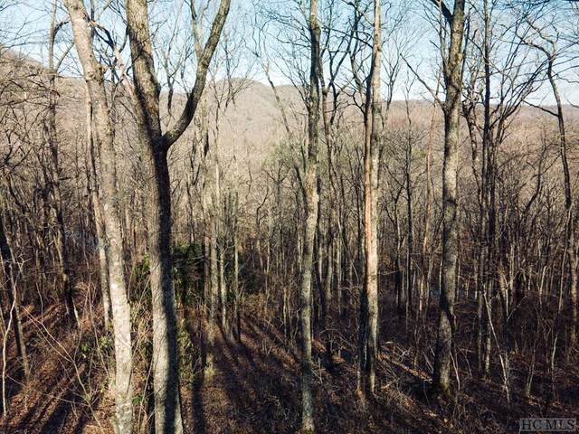 TBD New Settler's Way, Cashiers, NC 28717 (MLS #96044) :: Berkshire Hathaway HomeServices Meadows Mountain Realty