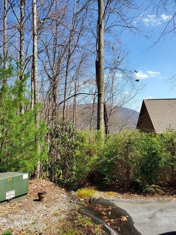 Lot 88 Bald Eagle Court, Sapphire, NC 28717 (MLS #96081) :: Berkshire Hathaway HomeServices Meadows Mountain Realty