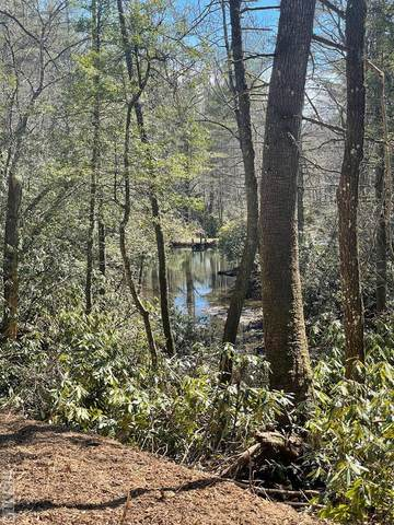TBD Horse Cove Road, Highlands, NC 28741 (MLS #96096) :: Berkshire Hathaway HomeServices Meadows Mountain Realty