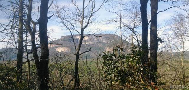 Lot M40 Ambient Way, Cashiers, NC 28717 (#97354) :: High Vistas Realty