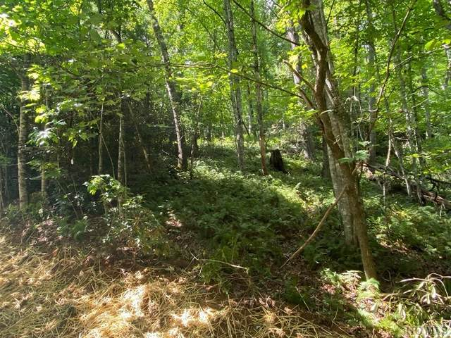 Lot 24 Gold Creek Road, Sapphire, NC 28774 (MLS #97487) :: Berkshire Hathaway HomeServices Meadows Mountain Realty