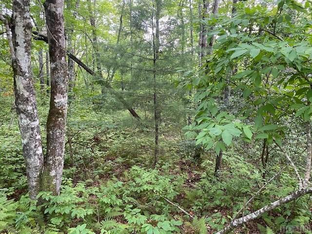 Lot B27 Ell Ridge, Glenville, NC 28736 (MLS #97541) :: Berkshire Hathaway HomeServices Meadows Mountain Realty