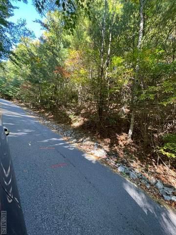 79 S Buckberry Drive, Sapphire, NC 28774 (MLS #97658) :: Pat Allen Realty Group