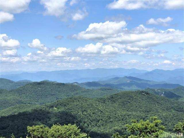 671 Zeb Buchanan Road, Cullowhee, NC 28723 (MLS #85322) :: Pat Allen Realty Group