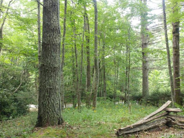 1742 + Shortoff Road, Highlands, NC 28741 (MLS #88875) :: Berkshire Hathaway HomeServices Meadows Mountain Realty