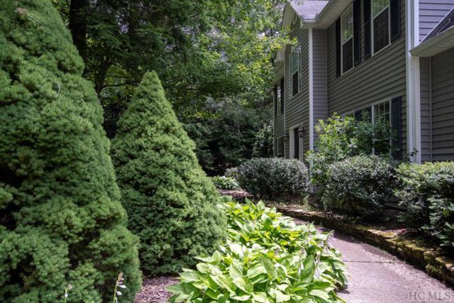 45 Chestnut Lane, Highlands, NC 28741 (MLS #91479) :: Pat Allen Realty Group