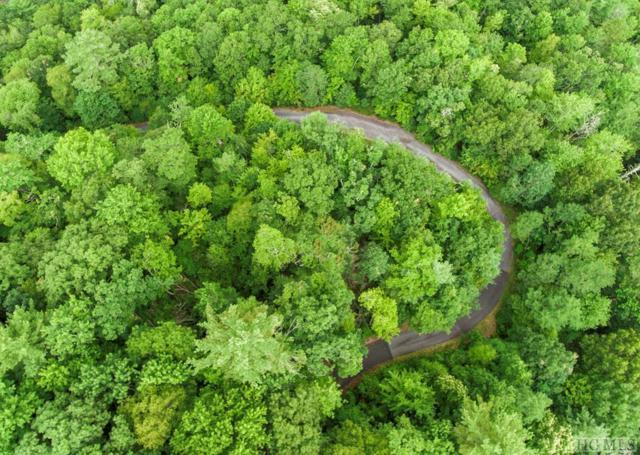 Lot 1 Forest Ridge Road, Cashiers, NC 28717 (MLS #91668) :: Pat Allen Realty Group