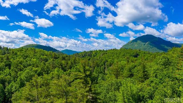 TBD Hwy 64W, Cashiers, NC 28717 (MLS #93633) :: Pat Allen Realty Group