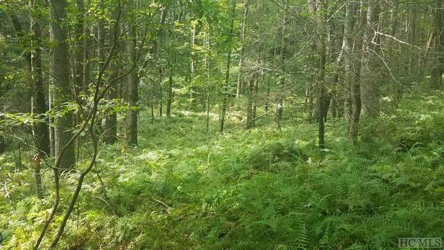 Lot 52 Blackberry Trail, Sapphire, NC 28774 (MLS #95325) :: Berkshire Hathaway HomeServices Meadows Mountain Realty