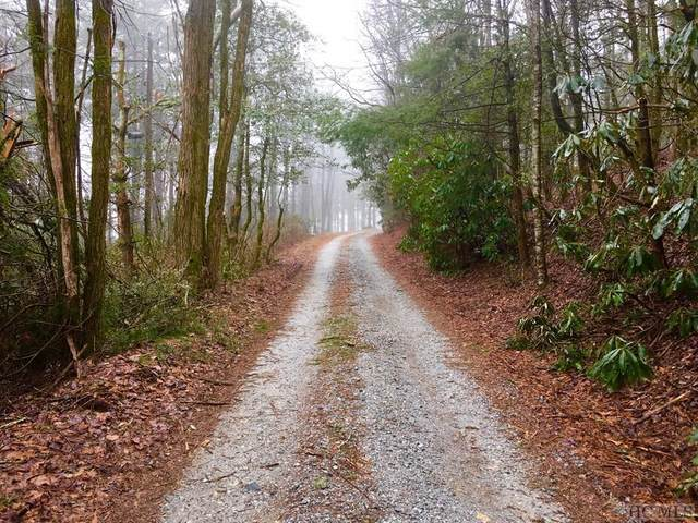 TBD Osage Lane, Scaly Mountain, NC 28775 (MLS #95367) :: Pat Allen Realty Group