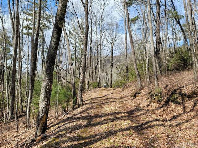 Lot 10D Heather View Lane, Sapphire, NC 28774 (MLS #95722) :: Berkshire Hathaway HomeServices Meadows Mountain Realty
