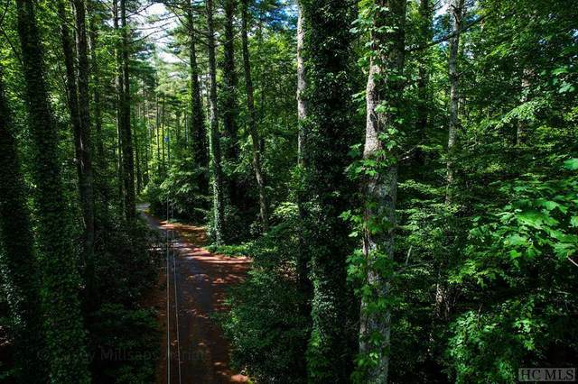 Lot 1 Hummingbird Trail, Glenville, NC 28735 (MLS #96882) :: Berkshire Hathaway HomeServices Meadows Mountain Realty