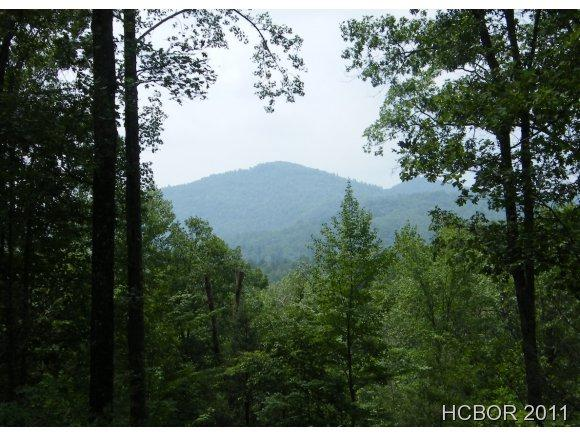5 W Whitetail Drive, Sapphire, NC 28774 (MLS #73690) :: Berkshire Hathaway HomeServices Meadows Mountain Realty