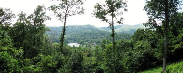 Lot 11 Glen Laurel Lane, Cullowhee, NC 28723 (MLS #81939) :: Lake Toxaway Realty Co