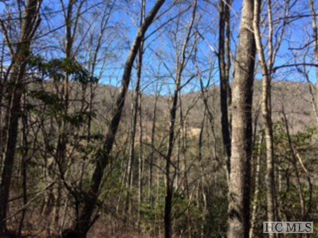 00 Paradise Mountain, Cullowhee, NC 28723 (MLS #83279) :: Berkshire Hathaway HomeServices Meadows Mountain Realty