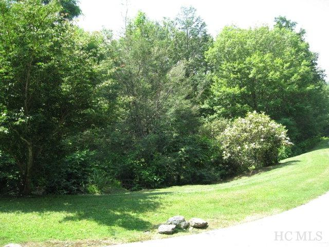 Lot 50 Big Sheepcliff Road, Cashiers, NC 28717 (MLS #83307) :: Berkshire Hathaway HomeServices Meadows Mountain Realty