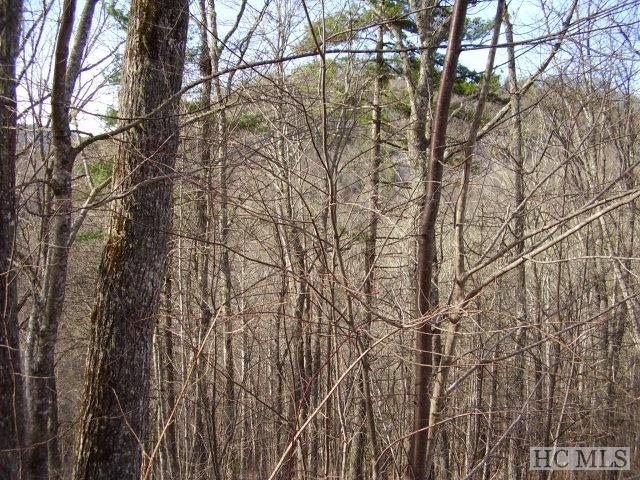 Lot 12 Captiva Mountain Drive, Cullowhee, NC 28723 (MLS #83343) :: Berkshire Hathaway HomeServices Meadows Mountain Realty