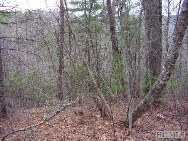 Lot 31 Tahala Trail, Cullowhee, NC 28723 (MLS #83464) :: Berkshire Hathaway HomeServices Meadows Mountain Realty
