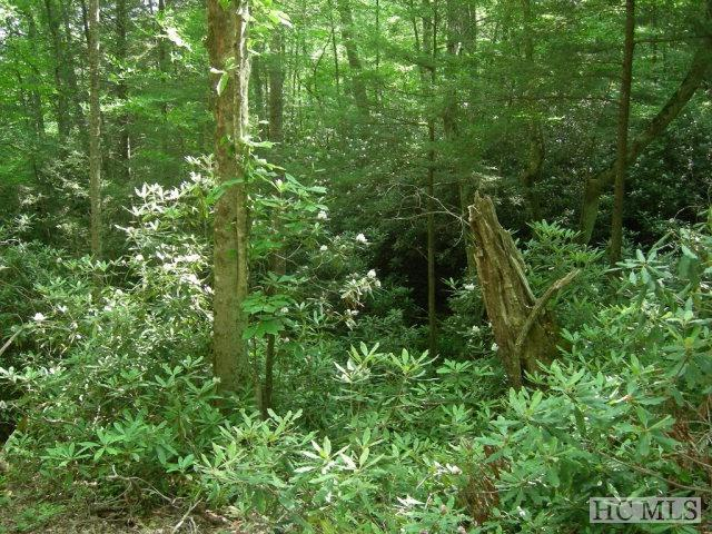 0 Via Del Lago, Cullowhee, NC 28723 (MLS #83527) :: Berkshire Hathaway HomeServices Meadows Mountain Realty