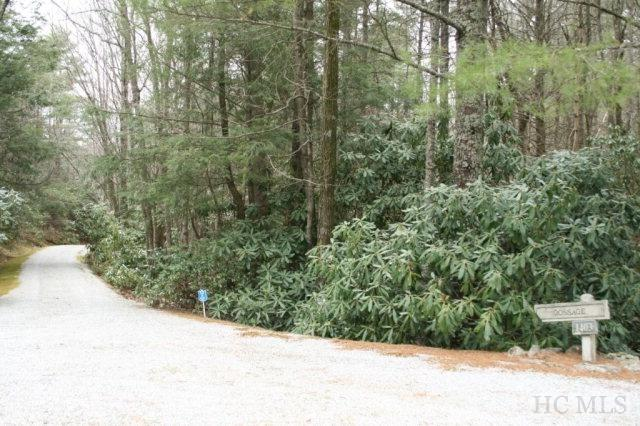 6 & 8 Big Sheepcliff Road, Cashiers, NC 28717 (MLS #83546) :: Berkshire Hathaway HomeServices Meadows Mountain Realty