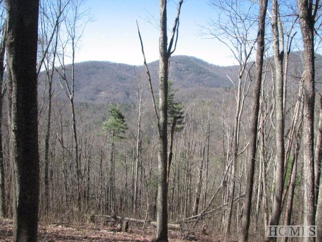 Lot 10 Historic Highlands Drive, Highlands, NC 28741 (MLS #83560) :: Lake Toxaway Realty Co