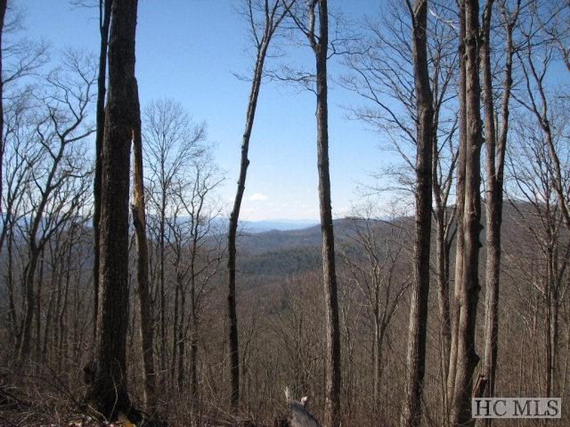 Lot 12 Historic Highlands Drive, Highlands, NC 28741 (MLS #83562) :: Lake Toxaway Realty Co