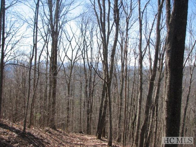 Lot 1 Historic Highlands Drive, Highlands, NC 28741 (MLS #83564) :: Lake Toxaway Realty Co